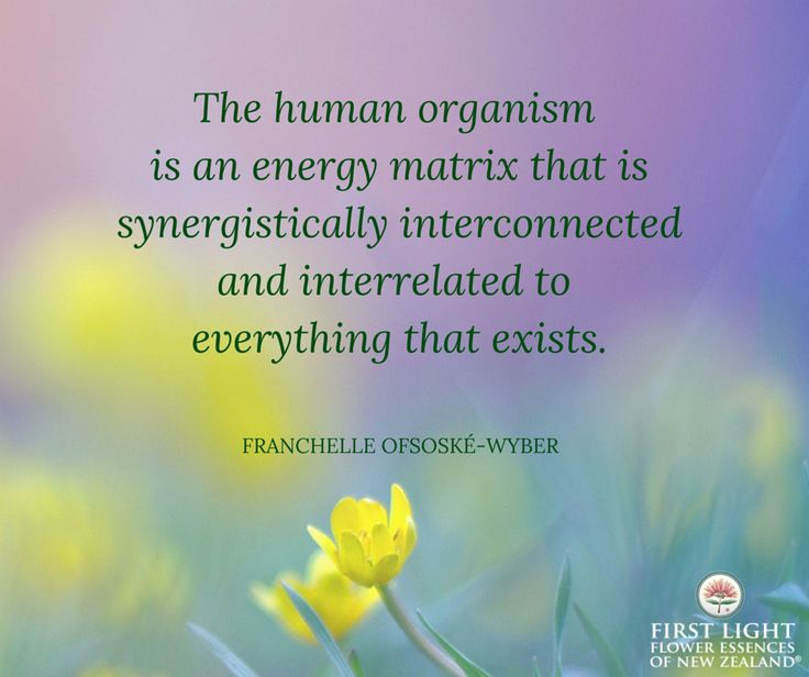 The human organism is an energy matrix.