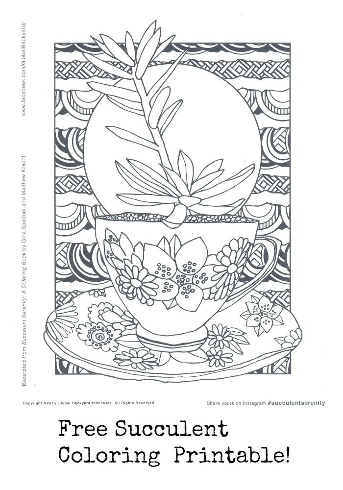 Free coloring page from the new coloring book Succulent Serenity. Sign up for our newsletter to get this and more freebies! At http://eepurl.com/bMFrm5.