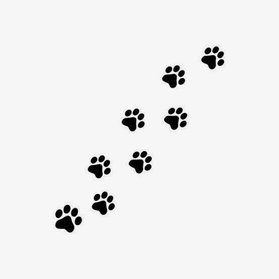 Tatuajes de patitas de perro
