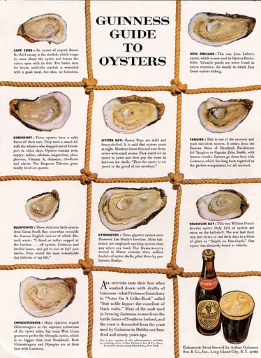 guinness guide to oysters
