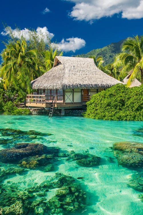 """Para """"esfumarse"""" con ella en las Maldivas..."""