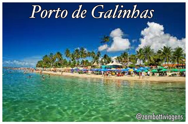 *PORTO DE GALINHAS* ✈️ Aéreo SP /Recife/ SP 🏨  Pousada Lusitana  7 dias/ 6 noites 🍞  Café da Manhã 👶 01 crianças até 5 anos  Grátis na hospedagem 🗓 Todas as Saídas de Março  A partir de 12 X de R$ 138,00 Total R$ 1.648,00  Valor por pessoa em apto duplo sujeito a alterações e disponibilidade de lugares.  Reservas e informações:  contato@zambottiviagenstur.com.br WhatsApp: +55 11 98442-2606  #zambottiviagens #suaviagemcomeçaaqui #vamosviajar #viajar #portodegalinhas #pernambuco #nordeste…