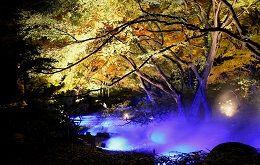 都内有数の紅葉の名所である六義園(りくぎえん)で、今年で17回目を迎える秋のライトアップを行います。 期間中は21時まで開園時間を延長して、秋の夜に朱色や黄金色に色づく木々が浮かび上がり、水面にまばゆく映し出される様子をお楽しみいただけます。 日常とは異なる、幻想的な姿を見せる六義園で、落ち着いた秋の佇まいと艶やかな紅葉をお楽しみください。