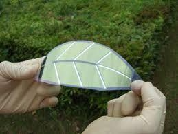 Image result for solar panel leaves