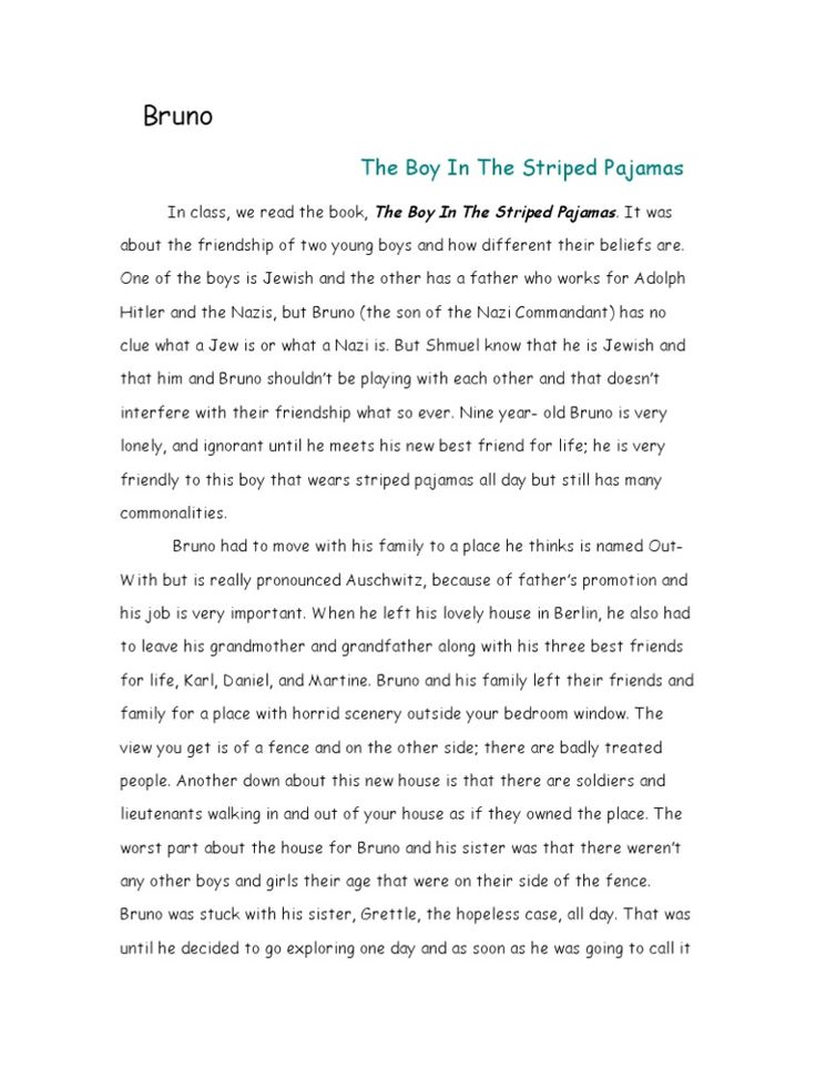 best boy in striped pyjamas ideas the stripes  essay about the boy in the striped pyjamas best opinion
