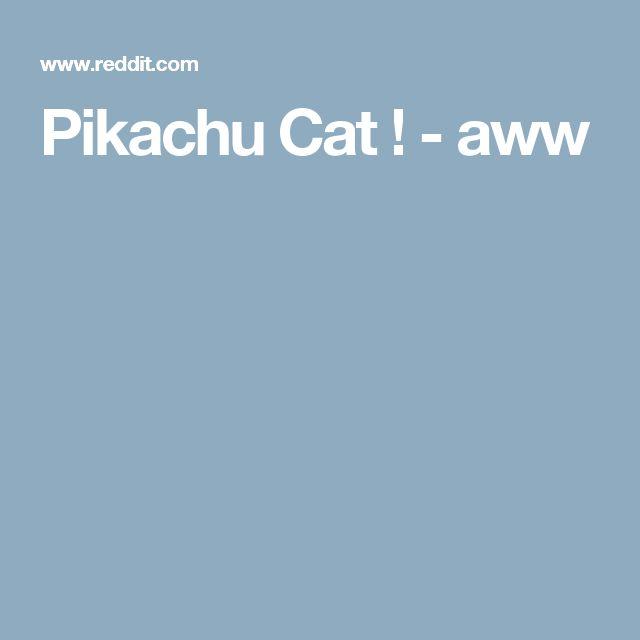 Pikachu Cat ! - aww