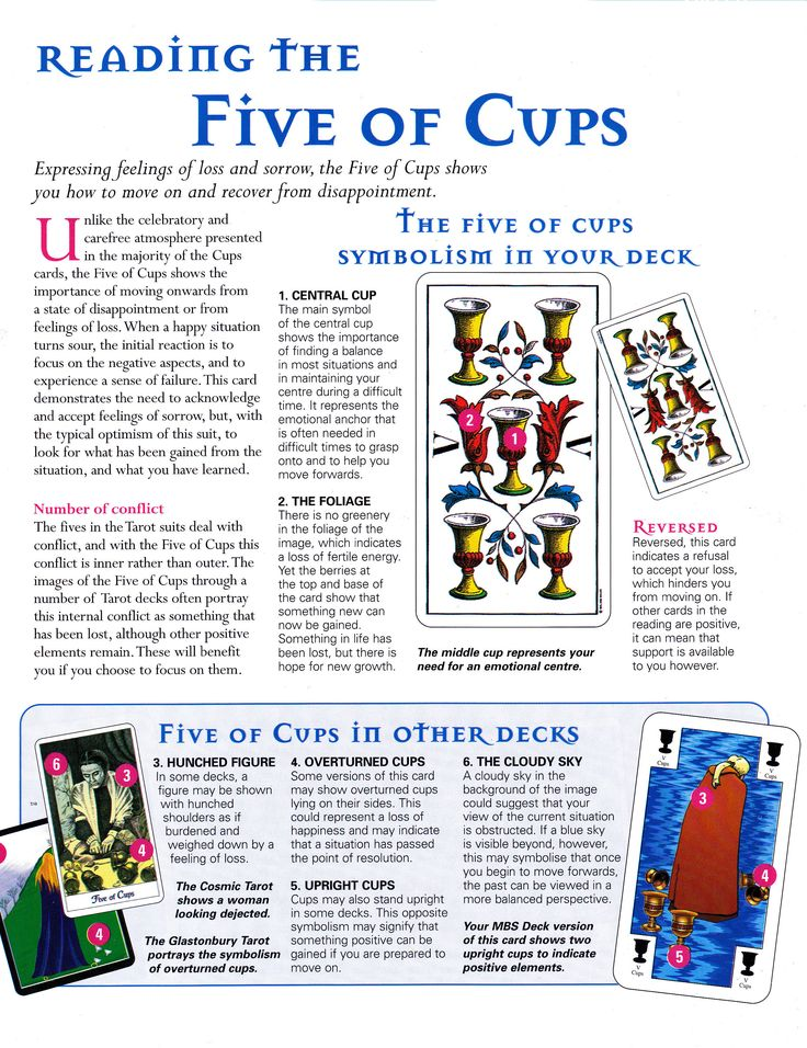 47 Best Five Of Cups Images On Pinterest