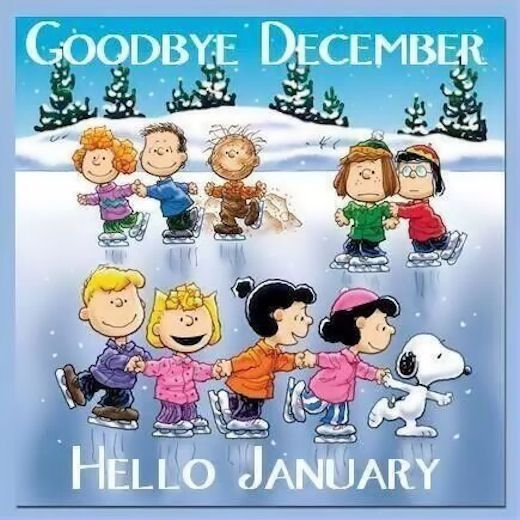 Image result for december's over welcome january