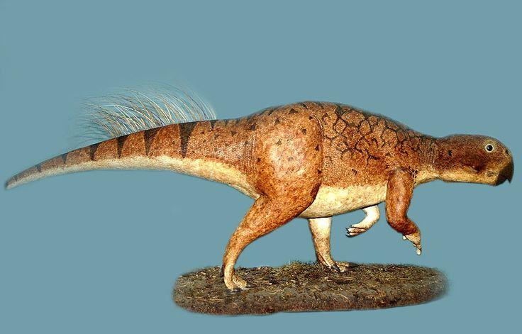 Bild:Psittacosaurus-mongolensis-1419.jpg - Tierdoku