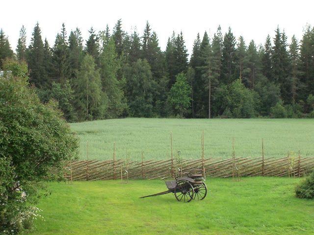 Takalo-Roppolan puutarha- ja mansikkatila: ARBORETUM