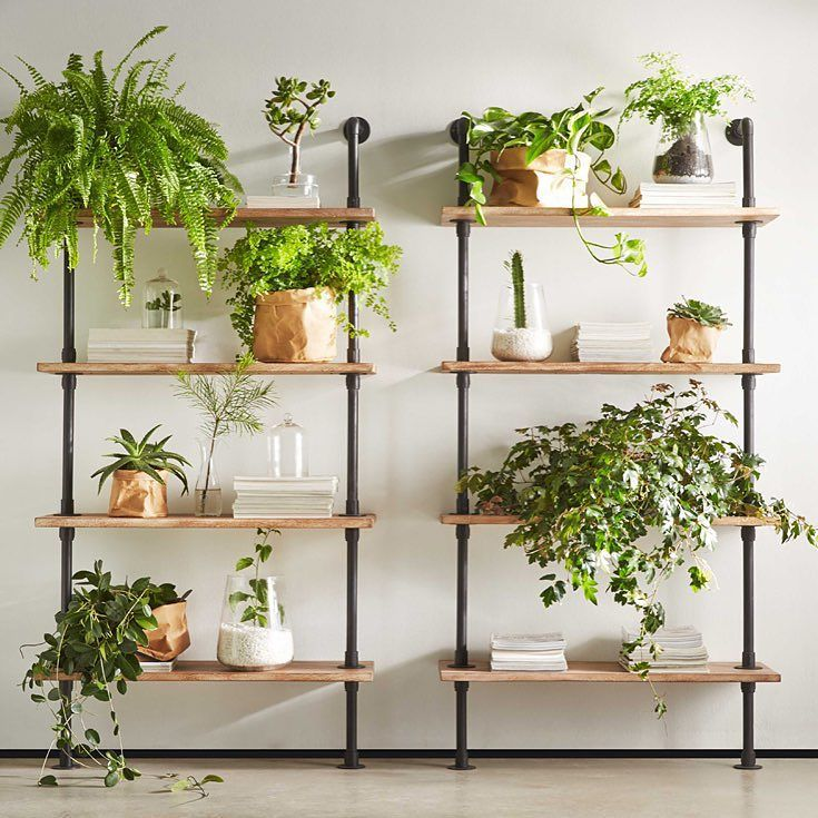 Fresh #spring mornings like today are perfect for refreshing your space our #conveyor shelving units combined with all your favourite vessels and potted plants are the perfect combo don't you think? #stylebyfreedom #freedomnz