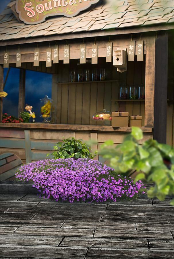 Фотографии Фонов Небольшие Магазины Цветы Камень Землю Фотографии Lk4243