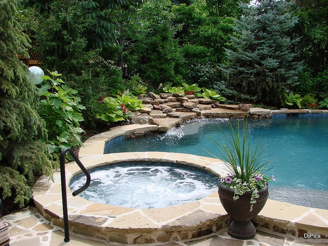 backyard pools backyard design garden backyard patios pools oasis