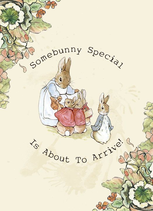 38 best Peter Rabbit Baby Shower ideas images – Beatrix Potter Birthday Invitations
