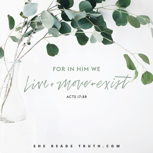 Acts of the Apostles reading plan from She Reads Truth | SheReadsTruth.com #SheReadsTruth