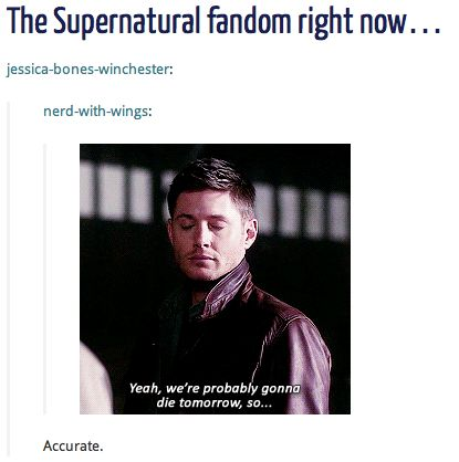The Supernatural Fandom Right Now... ''Yeah, we're probably gonna die tomorrow, so...'' / Season 9 Finale