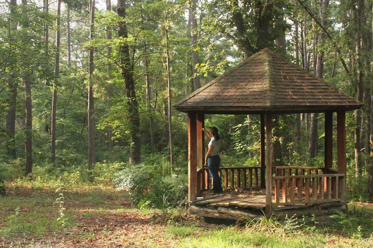 21 Best Buying Wood Garden Gazebos Images On Pinterest