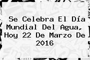 http://tecnoautos.com/wp-content/uploads/imagenes/tendencias/thumbs/se-celebra-el-dia-mundial-del-agua-hoy-22-de-marzo-de-2016.jpg Dia Del Agua. Se celebra el Día Mundial del Agua, hoy 22 de marzo de 2016, Enlaces, Imágenes, Videos y Tweets - http://tecnoautos.com/actualidad/dia-del-agua-se-celebra-el-dia-mundial-del-agua-hoy-22-de-marzo-de-2016/