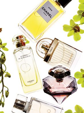 Fragrance-Feature-Image