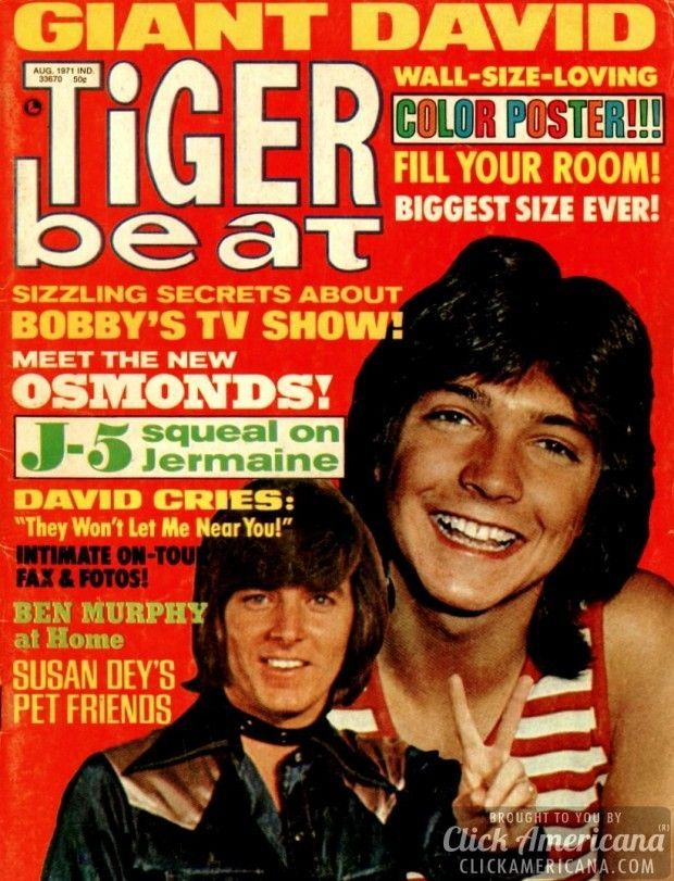 Tiger Beat magazine covers from the 1970s Like this.