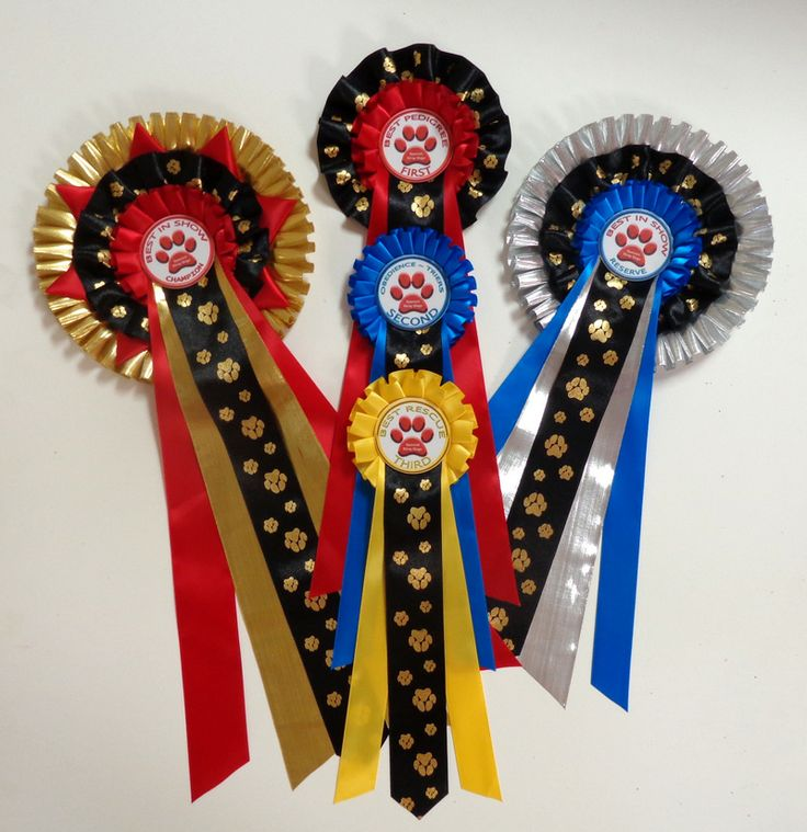 Madrid Rosettes use printed ribbon OR special ribbons Marbella Rosettes use printed ribbon AND special ribbons. These Marbella Rosettes are using Aztec gold and silver ribbons with Gold Dog Paws printed black ribbons mixed with our normal luxurious satin ribbons.  Do you like? http://escarapelas.com/