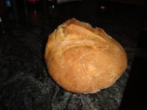 Making Artisan bread in 5 thermo friendly