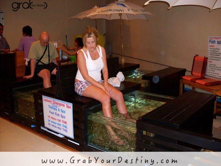 The Fish Spa! I am not so sure about this!!!  #FishSpa  #ChiangMai #GrabYourDestiny #JasonAndMichelleRanaldi #Travel #Thailand www.GrabYourDestiny.com