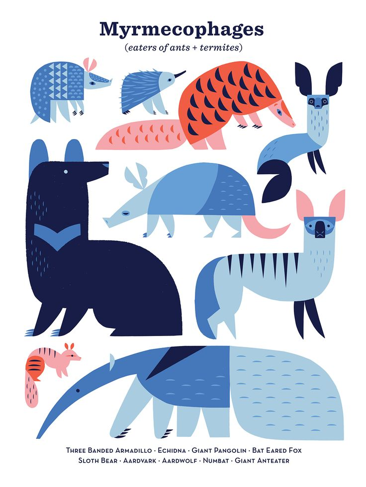 Termite Eaters on Behance