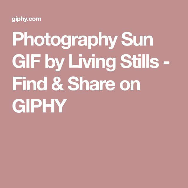 Photography Sun GIF by Living Stills - Find & Share on GIPHY