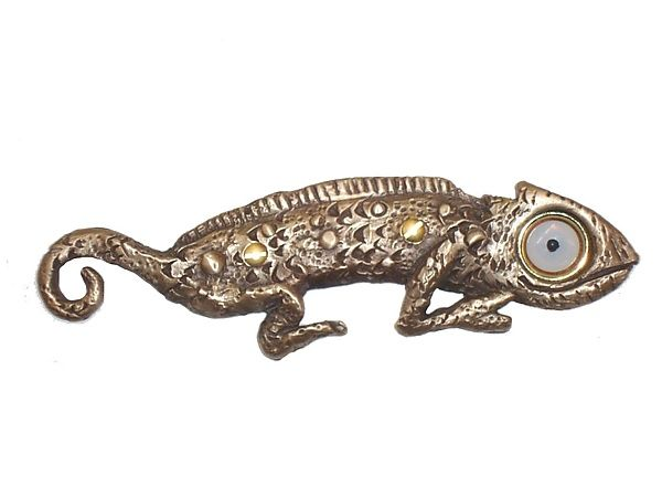 Chaz Chameleon Doorbell Cover by Rosalie Sherman: Bronze Doorbell Cover available at www.artfulhome.com