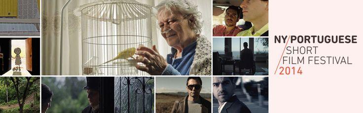 """""""O que eu entendo por amor"""" em New Bedford Premiere of the NY Portuguese Short Film Festival"""