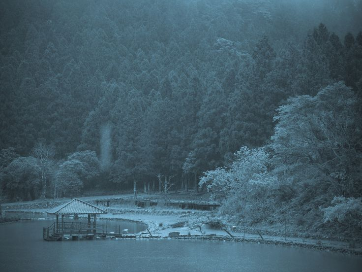 Mingchin Forest Recreation Area 明池國家森林遊樂區  2009/3/6~7