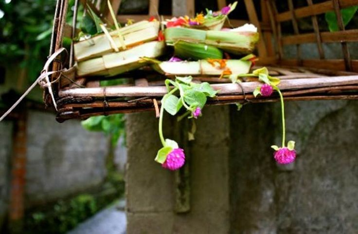 What I Love (and Hate) About Bali