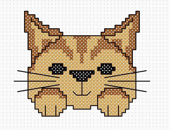 Ginger+Image.jpg 586×446 pixels