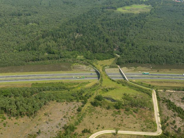 Ecoduct-Wildlife bridge in the Netherlands.