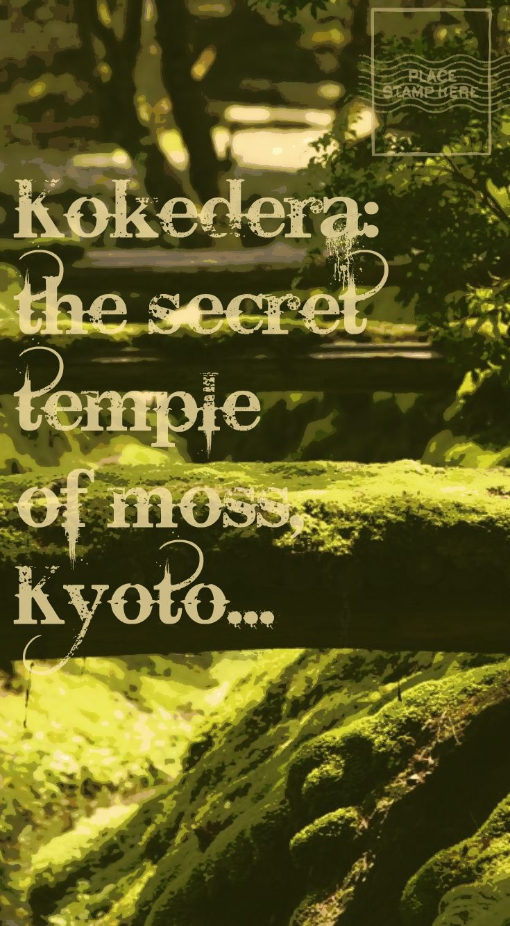 Find out about the hidden gem of Kyoto: the stunning temple of moss!! With travel tips to be admitted.