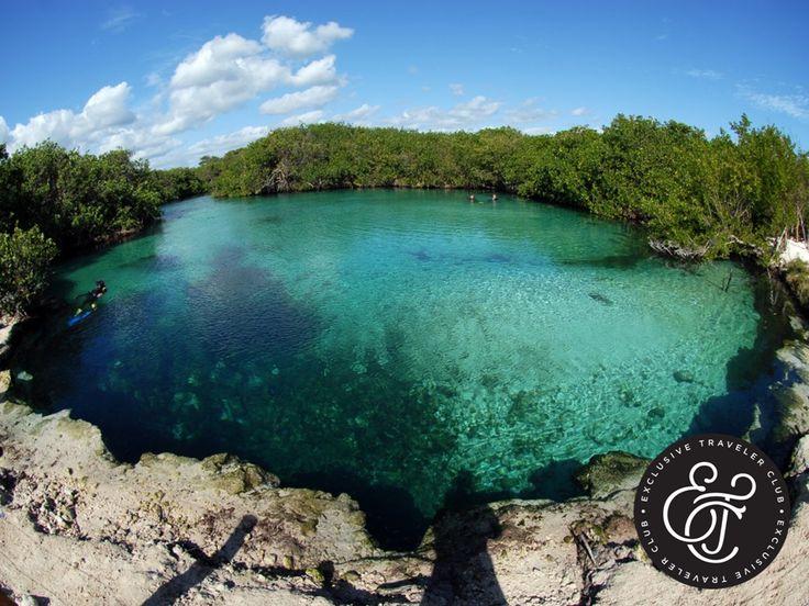 EXCLUSIVE TRAVELER CLUB. Si algo distingue a la Riviera Maya, es la gran cantidad de cenotes con los que cuenta. Estos lugares que eran sagrados para los mayas, le invitan a vivir una experiencia diferente y llena de aventura entre la naturaleza. Algunos de los más famosos son el Cenote Calavera, Cenote Dos Ojos, Gran Cenote y el Cenote Escondido. En Exclusive Traveler Club, le invitamos a planear una visita a alguno de estos sorprendentes lugares, para agregar momentos inolvidables a su…