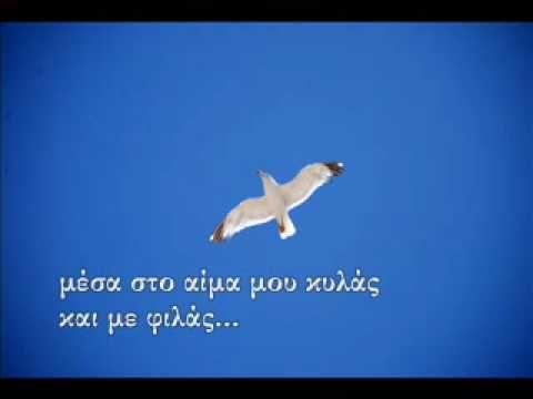 Γιάννης Κούτρας - Πόσο σ αγαπώ