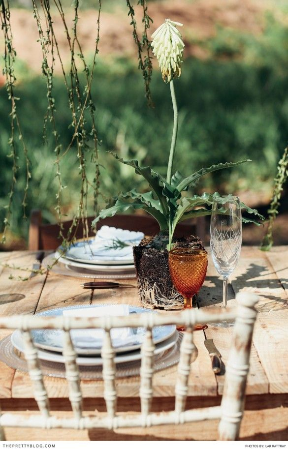 Outdoor table decoration with hints of orange for Thanksgiving | Photography by Lar Rattray