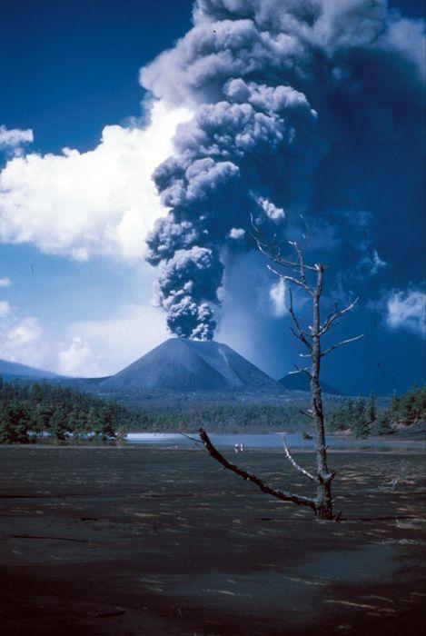 Le Paricutin, Mexique Le volcan est né le 30 février 1943 par une éruption qui a…