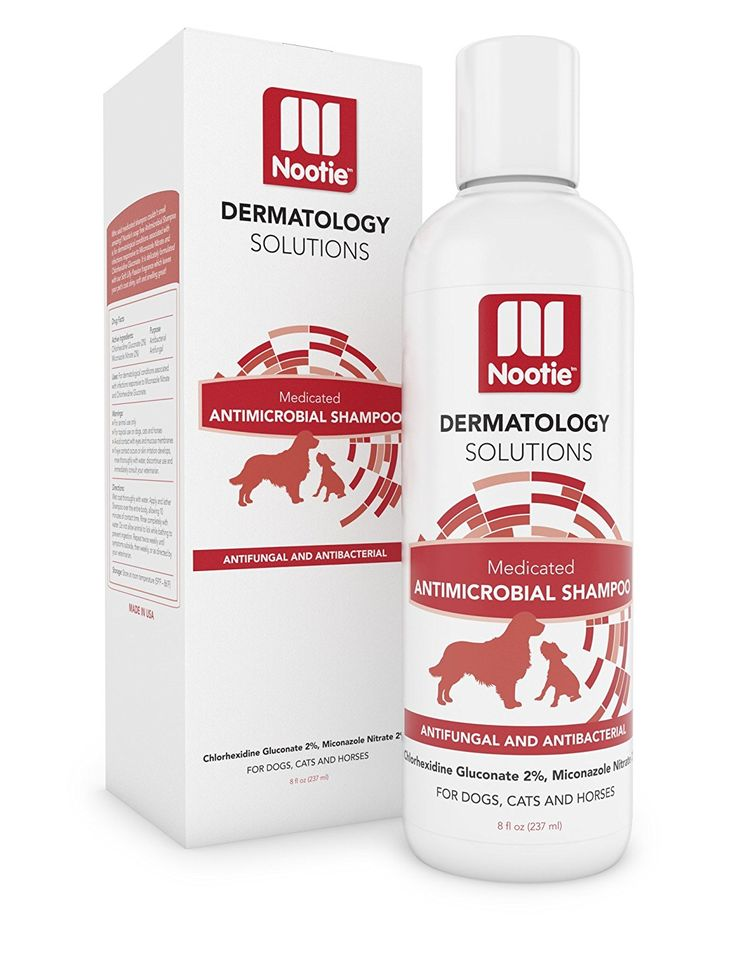 Medicated Dog Shampoo: Antifungal, Antibacterial Dog Shampoo - Lather Then Rinse To Soothe Irritation and Strengthen Coat - Pet Shampoo Also Works On Cats and Horses - Best Dog Shampoo For Your Buck ^^ Special dog product just for you. See it now! : Dog supplies for health