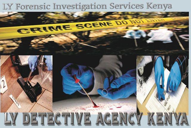 How Ly Private Investigators In Kenya Assist In Solving Criminal