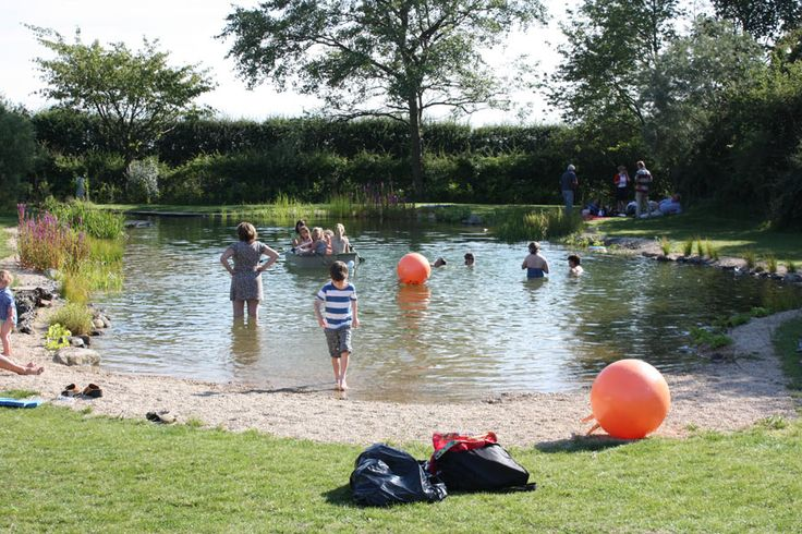 Swimming Pond Conversions from Ponds & Lakes this is the kind of beachy area…