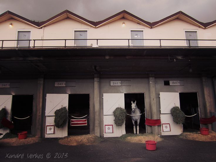 Horse Stables...