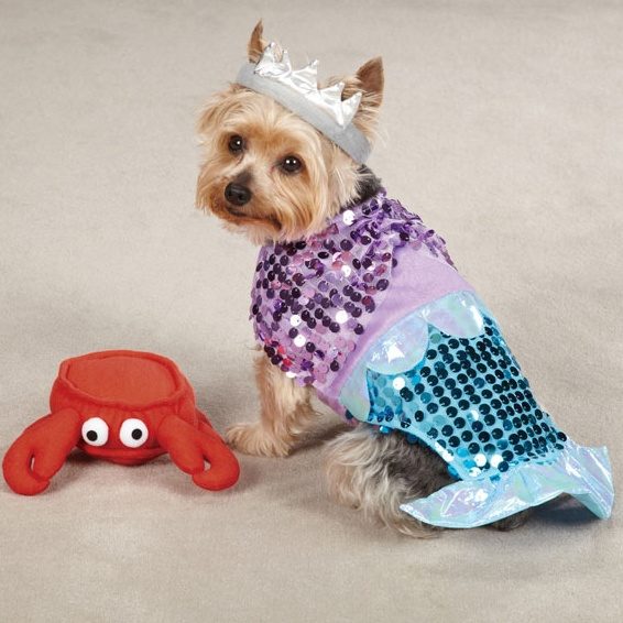 little mermaid ariel dog costume with plush sebastian toy halloween - Halloween Costumes For Labradors