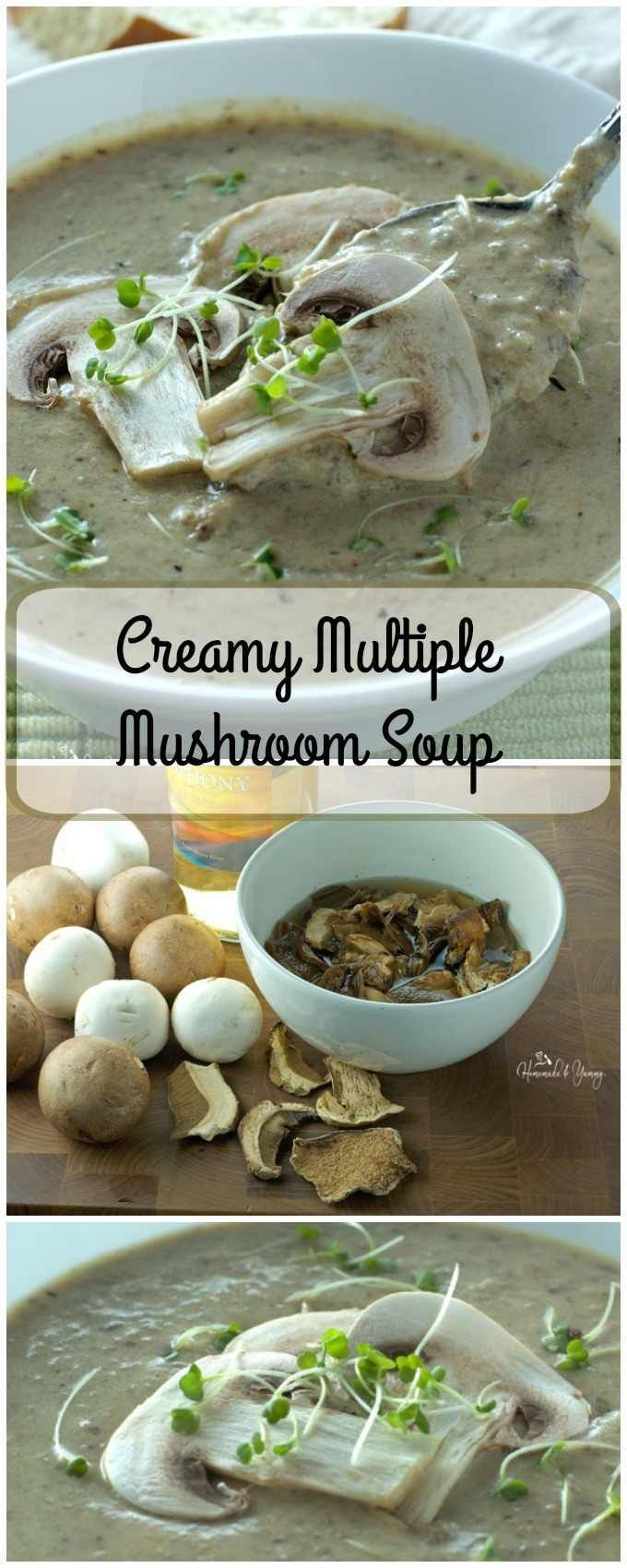 Fresh and dried mushrooms are used to make this Creamy Multiple Mushroom Soup…