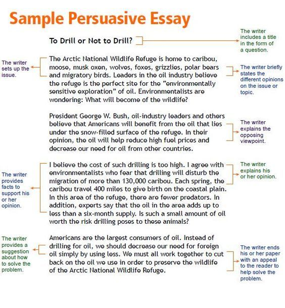 how should a persuasive essay be set up