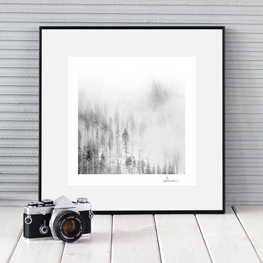 Czarno biała fotografia, zimowy pejzaż II