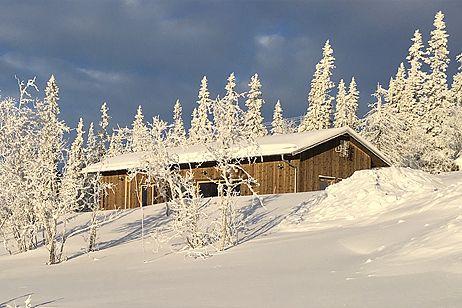 Arkitektritade villor och fritidshus från husföretaget Arvesund - Ladhus