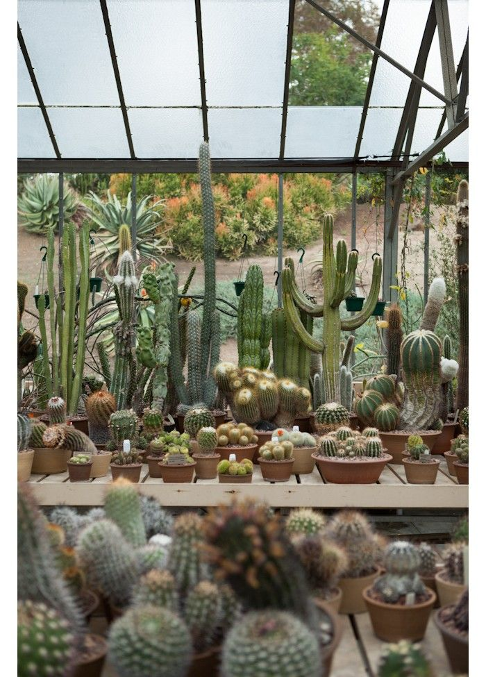 The Desert Garden Conservatory at the Huntington Botanical Gardens protects a collection of more than 3,000 succulents